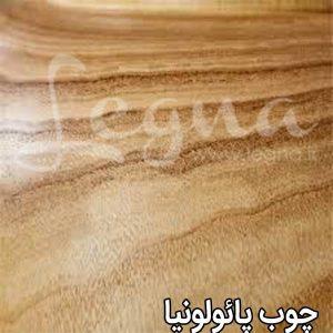 چوب پائولونیا